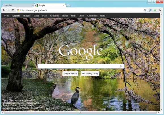 Set-Bing-Homepage-Wallpaper-as-Google-Homepage-Background.jpg
