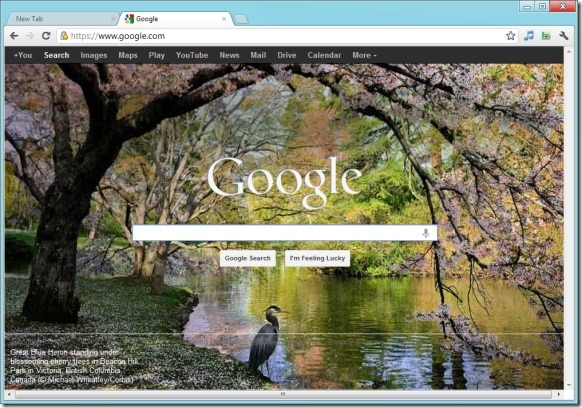 how to change homepage to google on windows 7