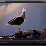 PotPlayer: Advanced Video Player For Windows