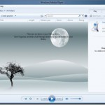 Change Windows Media Player Library Background In Windows 8 With WMP12 Library Background Changer