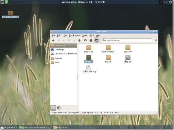 EasyRE for Windows desktop