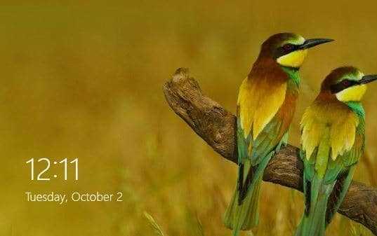 Bing Background Images