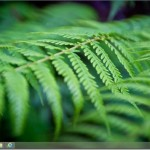 How To Disable or Stop Desktop Background (Wallpaper) Syncing In Windows 8.1