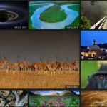 Download High Resolution Bing Homepage Pictures From Official Bing Homepage Gallery