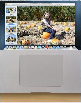 Disable macbook trackpad01