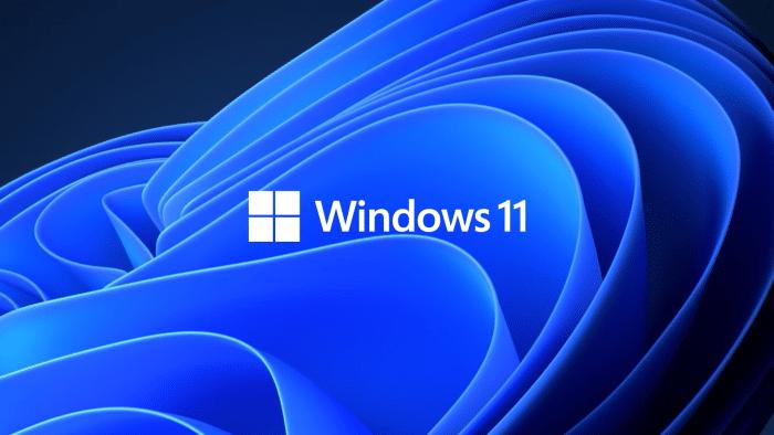 Windows 11 logo1